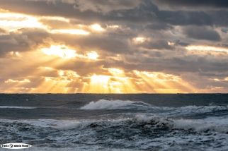 DSRF_Surf_Tour_4_2018_Oddhunt-3132